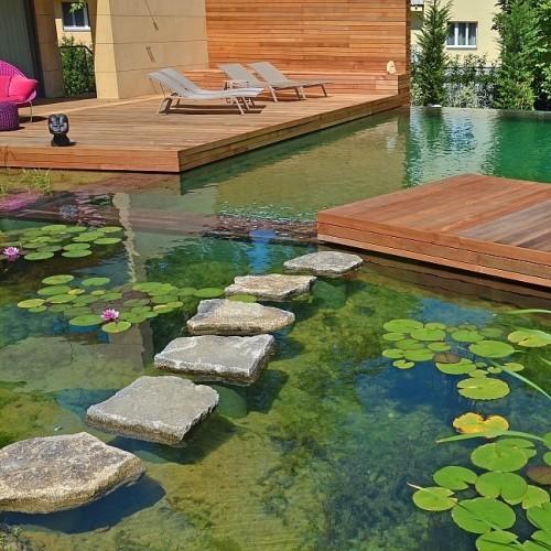 Πισίνα φυσική λίμνη